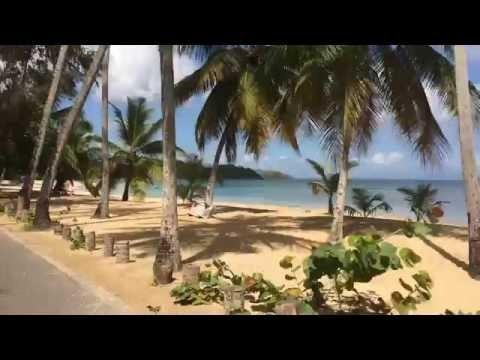 Route de la Villa Les Hibiscus - location vacances - République Dominicaine - IMG 0935
